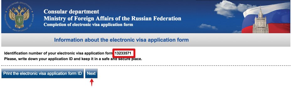 Visa application form Russia - USA Citizens 3